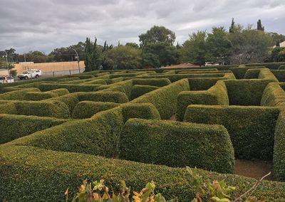 mandurah-maze